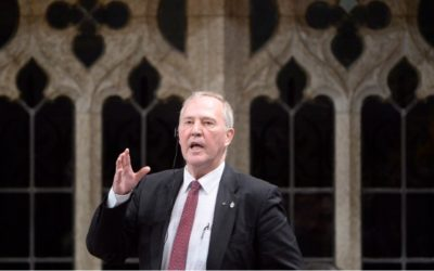 Canada Day 2018 shouldn't be about legalizing marijuana: Bill Blair